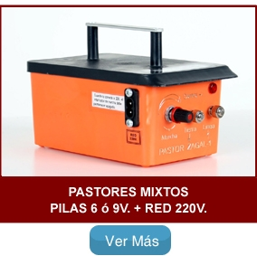 Pastores Mixtos Pilas + Red