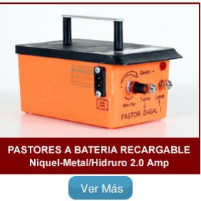 pastores-zagal-recargable1
