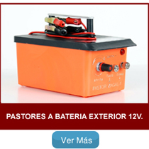 Pastores zagal Batería Exterior 12V