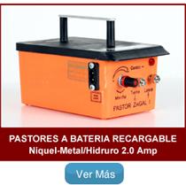 Pastores zagal Batería Recargable